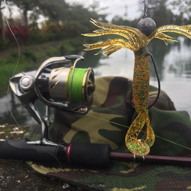 #fishing on #newplace for #snakehead get 5 #bites and 2 #lost #sad #рыбалка #новоеместо #змееголов 5 #поклевок 2 #схода #печаль #mefik - from Instagram