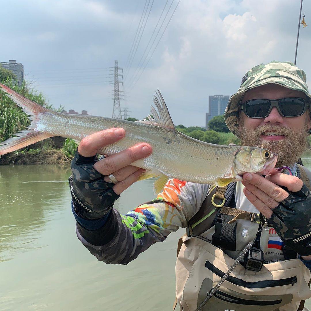 Новый вид пойман! New species caught! Lady fish, Большеглазая сельдь или Tenpounder. Lat. Elops machnata. Bait by @snastigood mosya