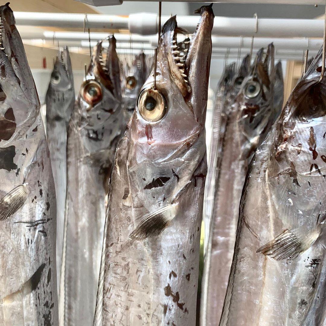 Вялка рыбы-сабли. Не знаю что получится. Hairtail dry fish. Never did that before.