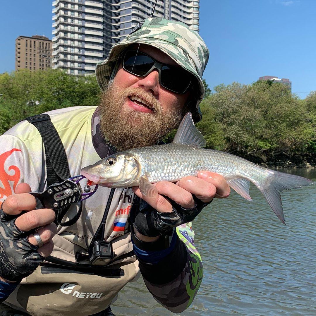 Нормальненький губарёк. Микроджиг по новым местам. Приманка от @snastigood Good size Amur barbel. Scouting new spots.